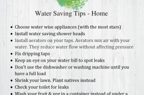 Fact Sheet – Water Saving Tips in the Home